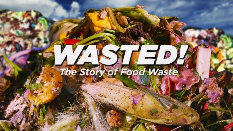 Wasted the story of food waste plus qa and reception rolling wasted the story of food waste plus qa and reception forumfinder Gallery